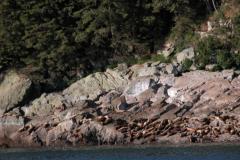 2005 Alaska D